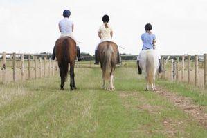 Cómo recortar y rehabilitar un Pony hundido