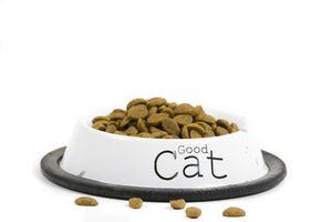 Lista de alimentos malos para los gatos