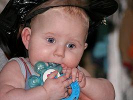 Alimentos para lactantes de 1 año de edad