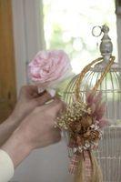 Cómo decorar un jaula pájaro dinero titular