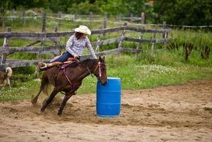 Proyectos de Ciencias en paseos a caballo y física