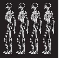 Juegos de anatomía interactiva