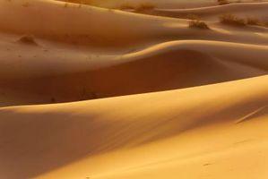 Desiertos en la tierra