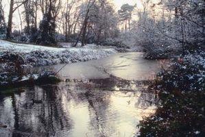 Fundamentos de pintura nieve y agua con acuarelas