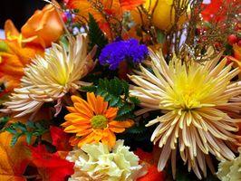 Las mejores flores para una boda de otoño