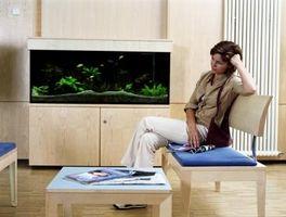 Especificaciones de acuario de vidrio de 120 galones