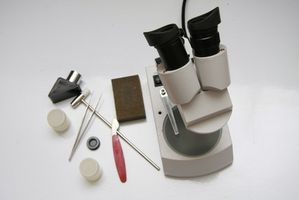 ¿Qué tipo de materiales se utiliza el microscopio de disección?