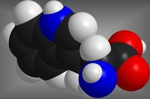 Las moléculas orgánicas más comunes en las células