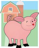 Cómo hacer una marioneta de cerdo