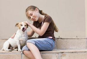 Juegos de verano divertido para niños y perros