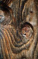 Cómo pintar sobre lienzo madera