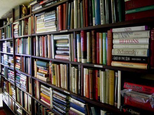 Cómo escribir un libro sin conseguir demandado