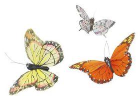 Jaulas caseras de mariposa para niños