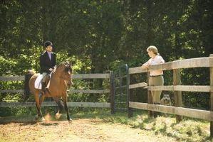 Cómo elegir el derecho de montar a caballo silla de montar de su caballo