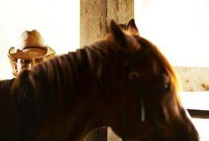 Como paquete de crin de caballo
