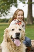 Cinco maneras para celebrar el mes Dental para mascotas
