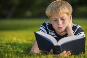 La definición de dispositivo de sonido en la literatura