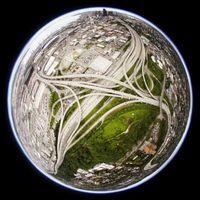 Cinco niveles de la Biosfera