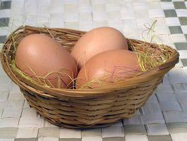 Cómo hacer huevos de pato orgánico