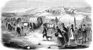 Migración: La Push & Pull factores