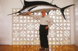 ¿Cuál es la diferencia entre un pez y un pez espada?