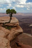 Escapadas románticas en Arizona