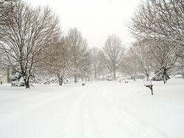 Consejos para mudarse a un clima más frío