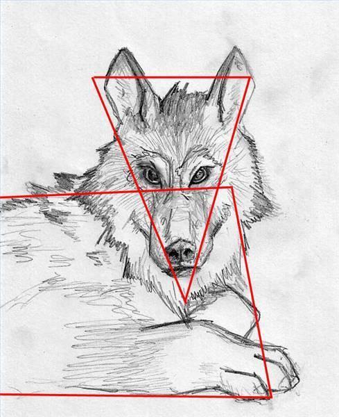 Cómo Dibujar Lobos Con Un Lápiz Usroasteriecom
