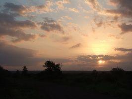 Cómo pintar una puesta de sol africana