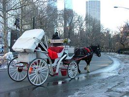 Lugares románticos para casarse en Chicago