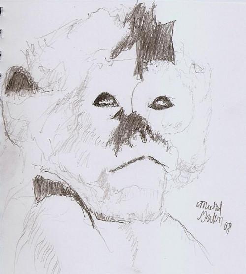 Cómo dibujar un mono capuchino
