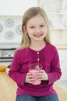 Los Snacks más saludables para niños de edad escolar