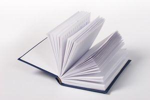 Cómo escribir sobre libros de literatura