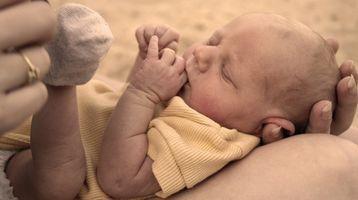 Escalas Bayley de desarrollo infantil formación