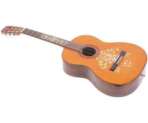 Proyectos DIY de guitarrista
