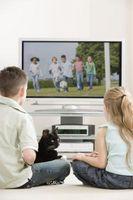 ¿Los gatos pueden ver la televisión?