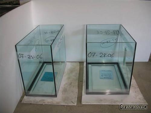 Fabricación de acuarios de vidrio