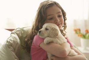 Cómo ayudar a su hijo a superar un miedo de los perros