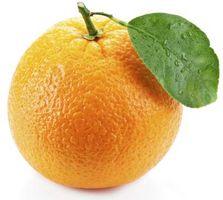 Actividades para preescolares sobre el Color naranja