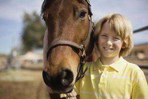 Cómo aumentar la confianza de su hijo con clases de equitación